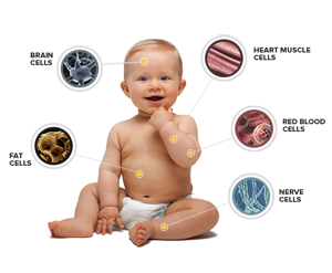 pulsed electromagnetic frequency therapy Baby